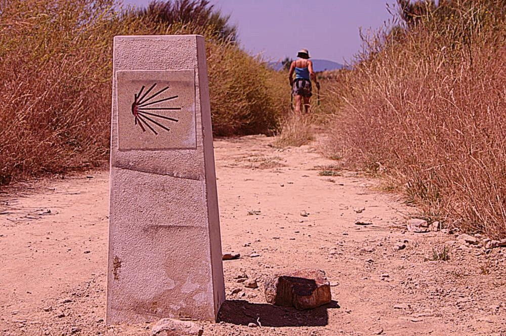 Camino de Santiago - Hiking Tour